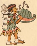 Aztec Conch Trumpeter (quiquizoani), Codex Magliabecchi